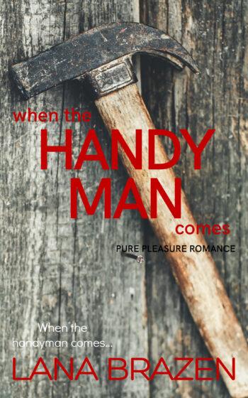 Handyman3.0